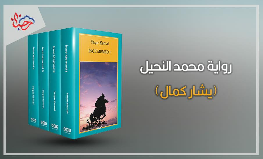 محمد النحيل يشار كمال - أشهر 5 روايات تركية مترجمة للعربية ينبغي عليك قراءتها
