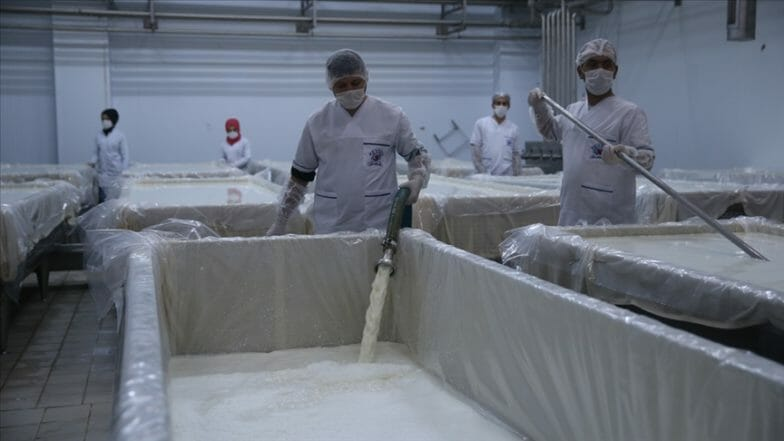 شركة تركية تستثمر في أكبر مصانع الألبان العراقية