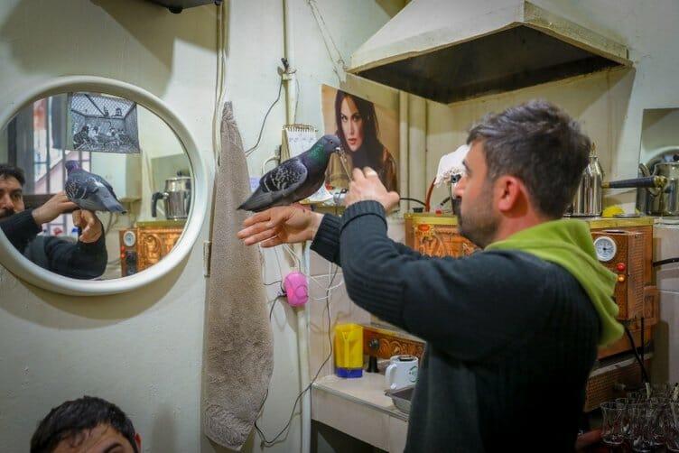 0x0 1554366547963 - طيور الحمام تستقبل الزبائن في مقهى تركي!