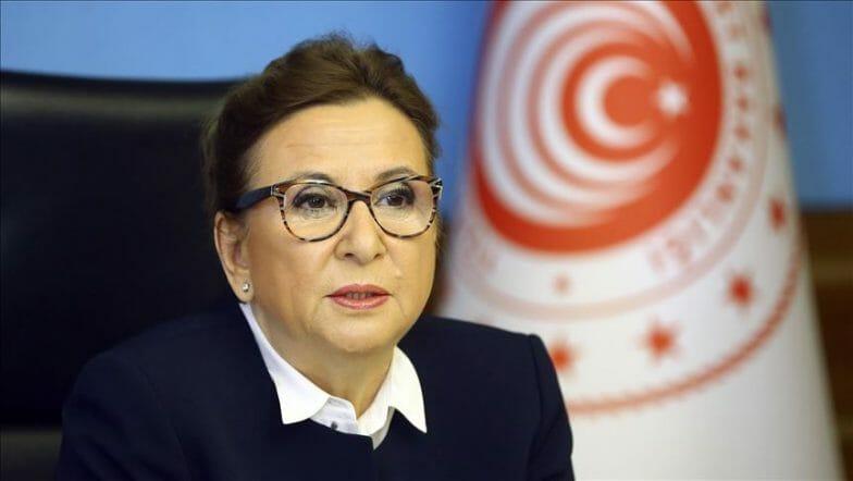 تركيا.. رفع جزئي لقيود نقل البضائع عبر الحدود البرية
