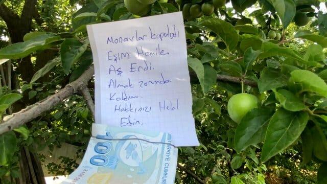 ozel insanlik olmemis dedirten hareket 2 13241611 o - مزارع تركي يجد أموال وملاحظة معلقة على الشجرة