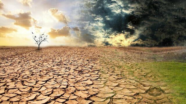 خبير تركي: خفض نمو السكان طوق نجاة من تأثيرات تغير المناخ