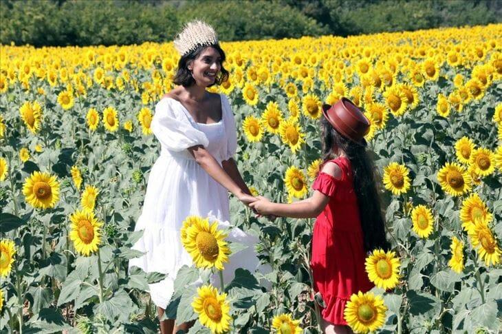 """تركيا.. """"العروس الصفراء"""" تغري عشاق التصوير"""