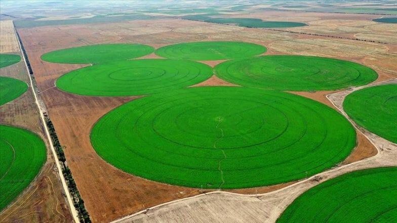 الواحد منها يعادل 50 ملعبا.. حقول دائرية عملاقة بتركيا