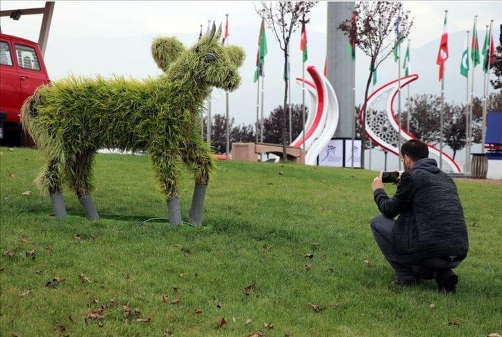 تماثيل عشبية تلفت الأنظار بجامعة تركية