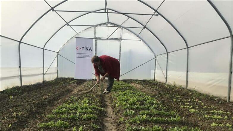 """""""تيكا"""" التركية تساهم بالاقتصاد الزراعي لتمكين نساء البوسنة"""