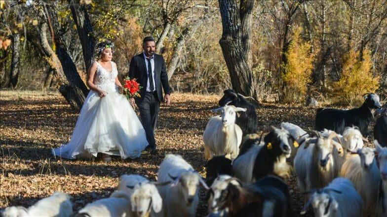 """""""وادي مونزور"""" بتركيا.. ألوان الخريف تجذب عشاق التصوير"""