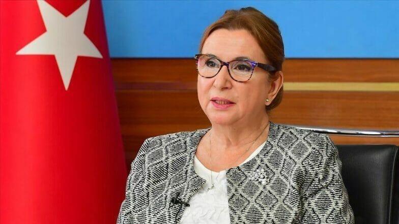 التجارة التفضيلية مع أذربيجان تدخل حيز التنفيذ مطلع مارس