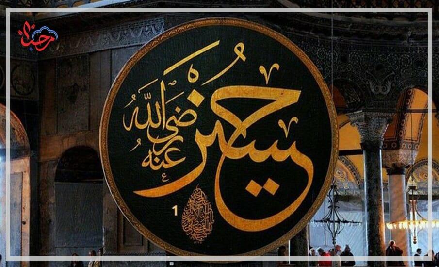 WhatsApp Image 2021 01 21 at 1.33.27 PM - نظرة تاريخية حول لوحات الخط في مسجد آيا صوفيا