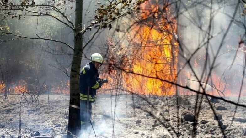 تركيا الأولى عالميا في سرعة إخماد حرائق الغابات خلال 2020