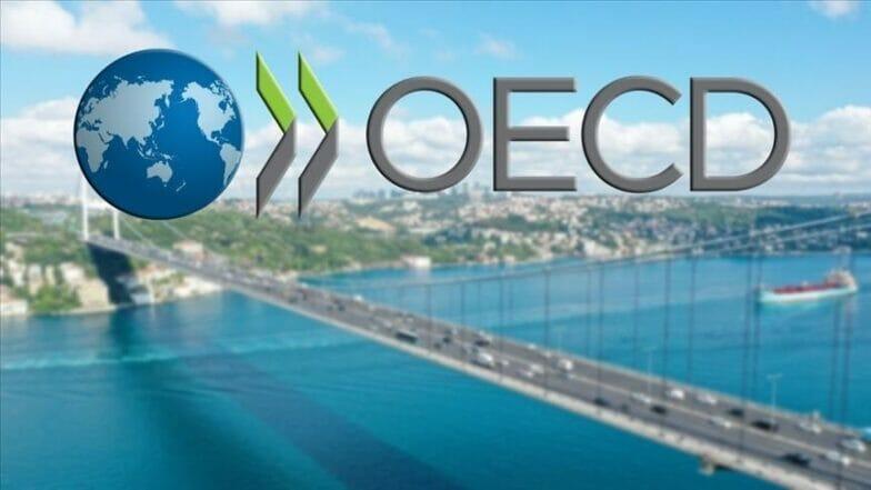منظمة دولية ترفع توقعاتها لنمو اقتصادي تركيا والعالم في 2021