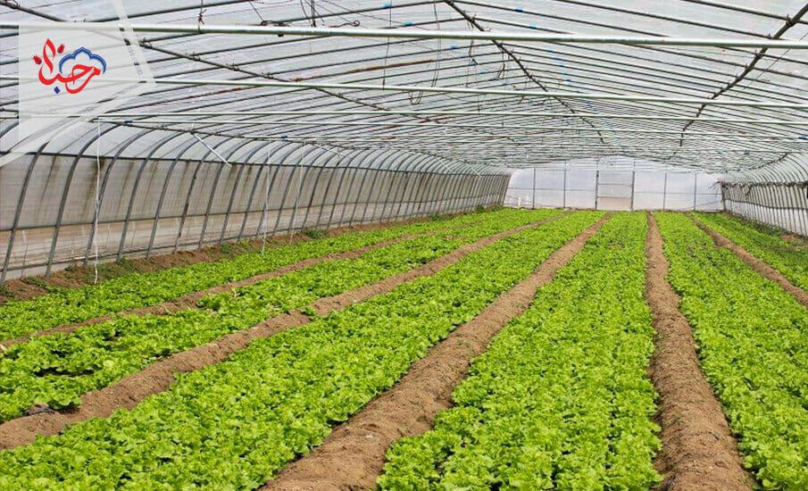 1 - المعارض الزراعية في تركيا دليلك 2021