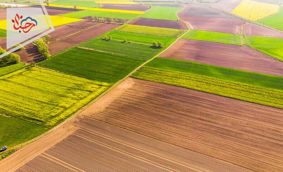 زراعية تركية 1 - الاقتصاد التركي في أسبوع 26-06-2021