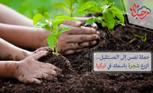 حملة نفس إلى المستقبل… ازرع شجرة باسمك في تركيا