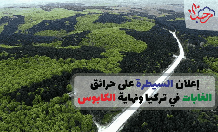 إعلان السيطرة على حرائق الغابات في تركيا ونهاية الكابوس