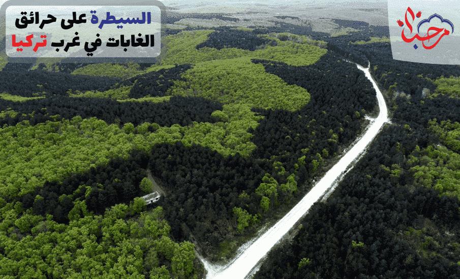 السيطرة على حرائق الغابات في غرب تركيا