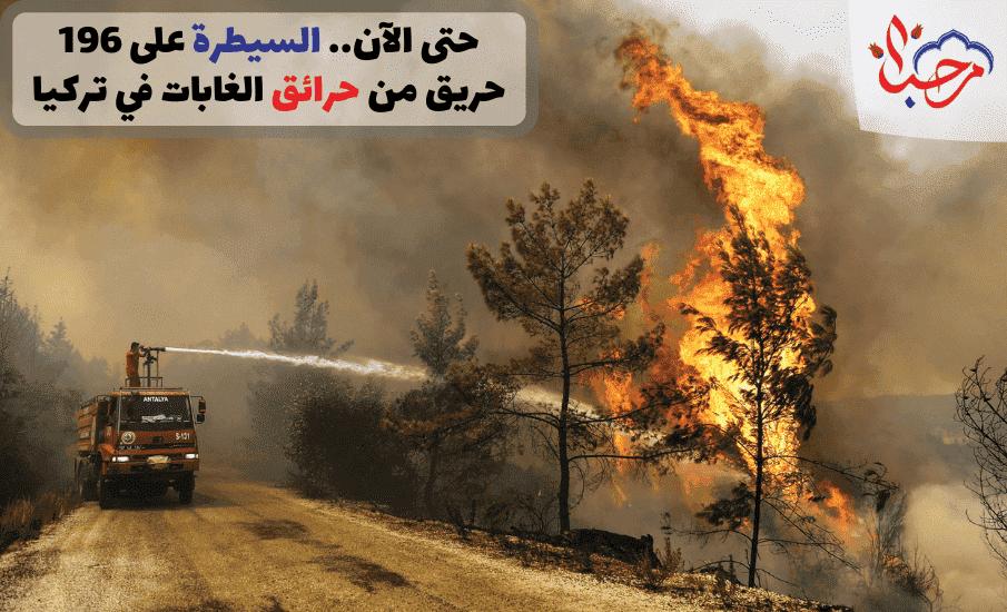 حتى الآن السيطرة على 196 حريق من حرائق الغابات في تركيا