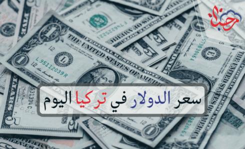 سعر الدولار في تركيا مقابل الليرة التركية اليوم الإثنين 02-08-2021