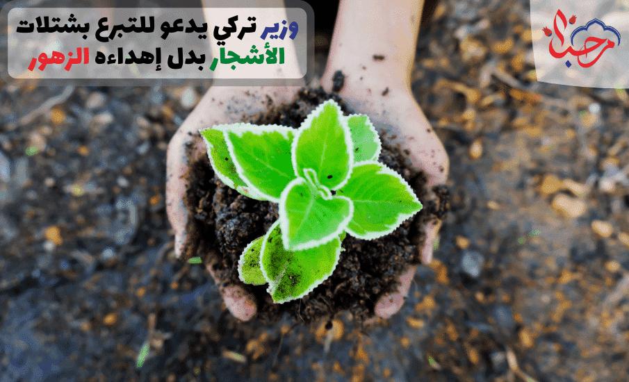 وزير تركي يدعو للتبرع بشتلات الأشجار بدل إهداء الزهور له