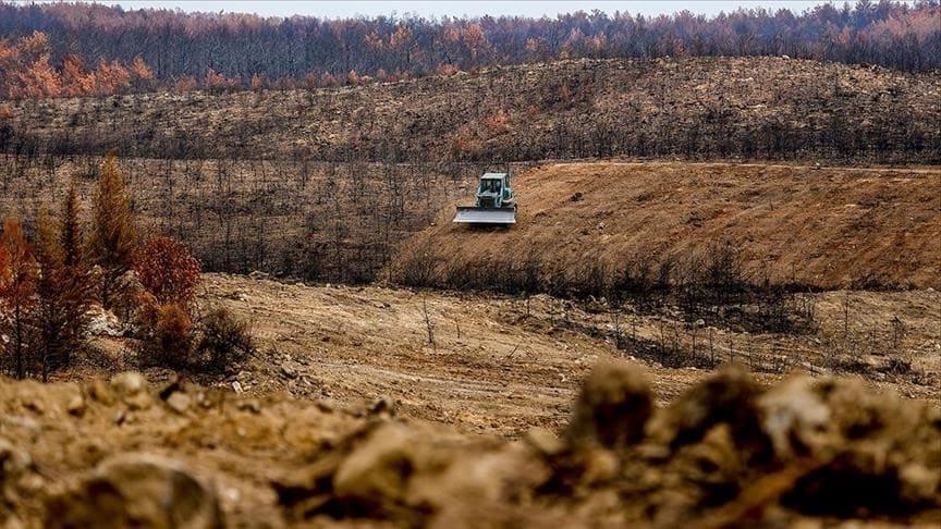 تأهيل الأرض للزراعة بعد حرائق الغابات في تركيا